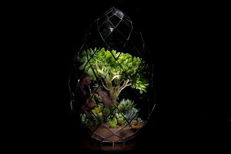 Briolette Terrarium by Angles & Earth