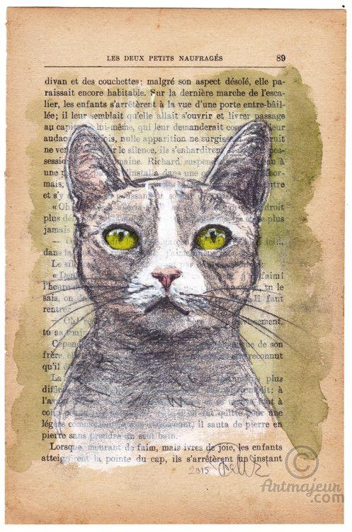CHATCHAT - Média mixtes, 15,7x24x0,01 cm ©2016 par evafialka - Art figuratif, Impressionnisme, Portraiture, Papier, Animaux, Chats, cat, chat, portrait animalier