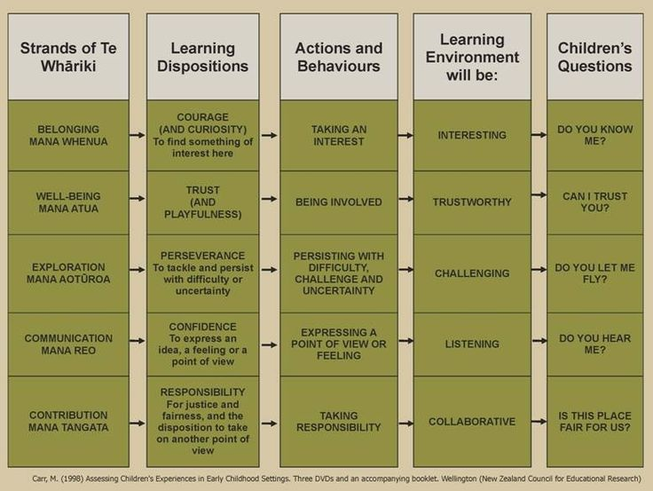 http://www.educate.ece.govt.nz/learning/exploringPractice/EducationalLeadership/LeadingProgrammes/Environment/~/media/Educate/Images/ELP/LearningDispositionsLge.gif