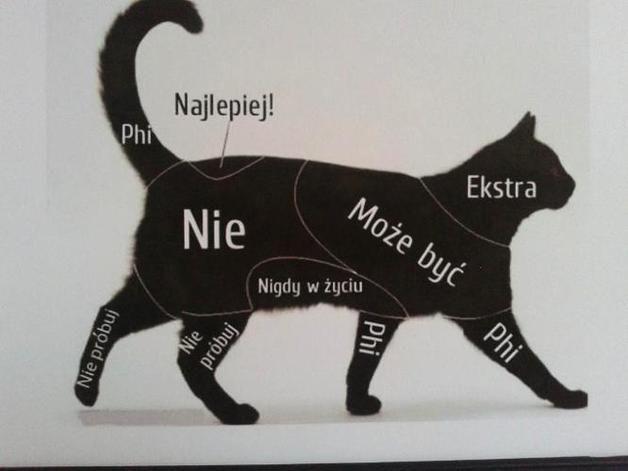 """Plakat Z RAMKĄ """"SCHEMAT GŁASKANIA KOTA&qu... - Sanwers - Ozdoby na ścianę"""