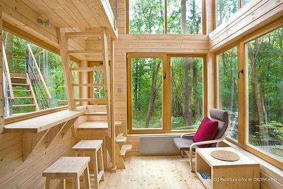 domki na drzewach w Nałęczowie