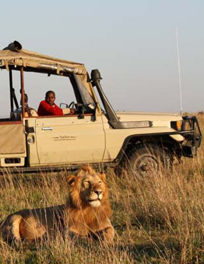 Masai Mara National Reserve in Kenya is Africa's most popular safari destination and boasts effortless vistas and dramatic game viewing.