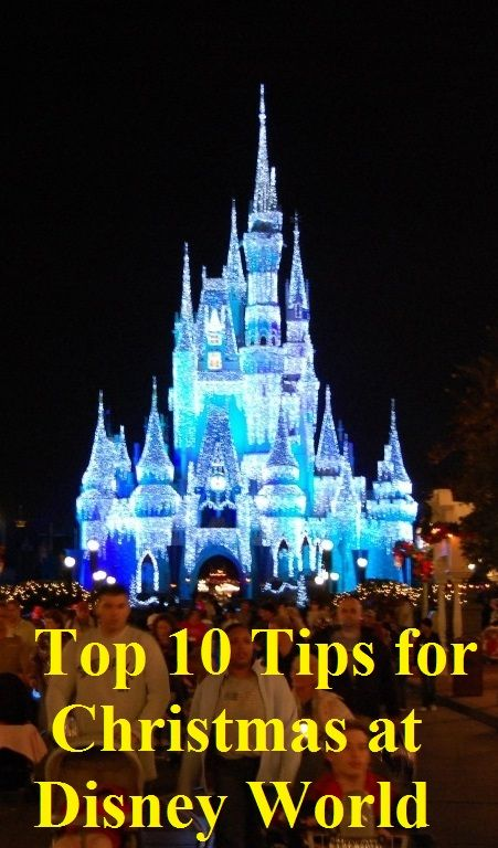 Top 10 Tips for your Christmas Vacation to Disney World. Avoid lines and have more fun. See http://www.squidoo.com/top-10-tips-for-visiting-disney-world-in-december