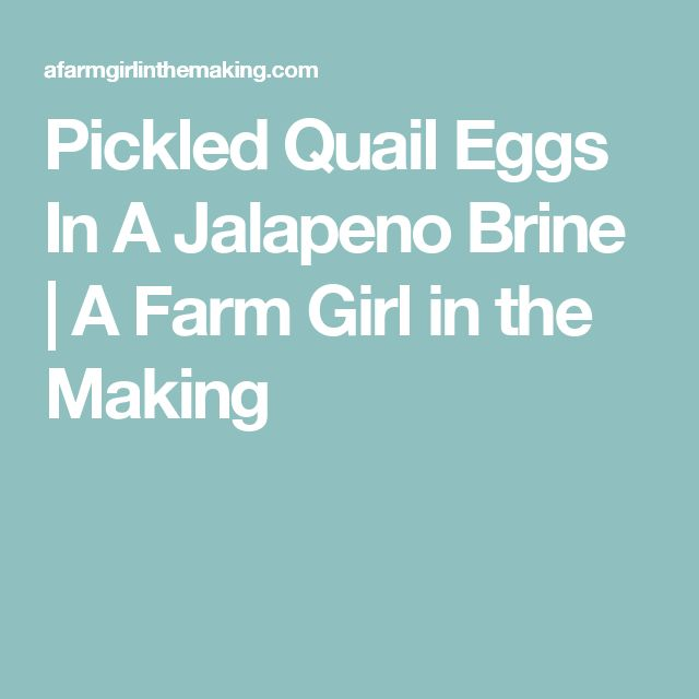 Pickled Quail Eggs In A Jalapeno Brine | A Farm Girl in the Making