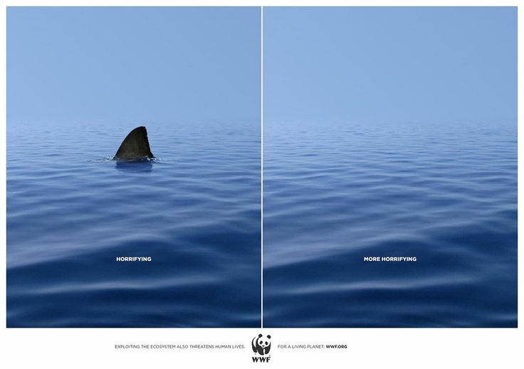 WWF. For a living planet.