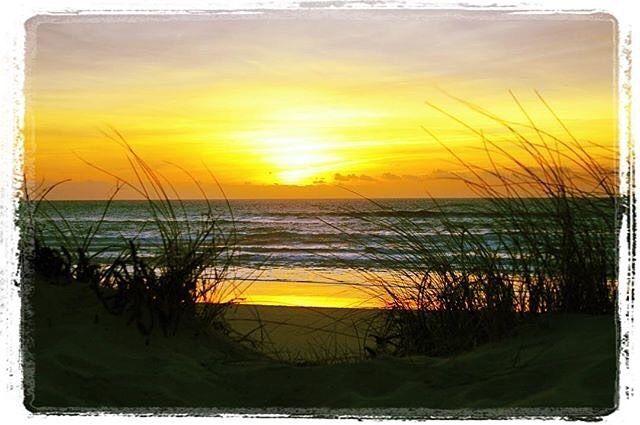 """Dans Côte Landes Nature il y a NATURE et nos plages sont des merveilles... """" Océan necessity  """" On est tout à fait d'accord ! #REPOST IG/chlooorsh  #ocean #contis #waves #night #sunrise #dune #beach #winter #calm #homesweethome #colors #light #nature #moment"""