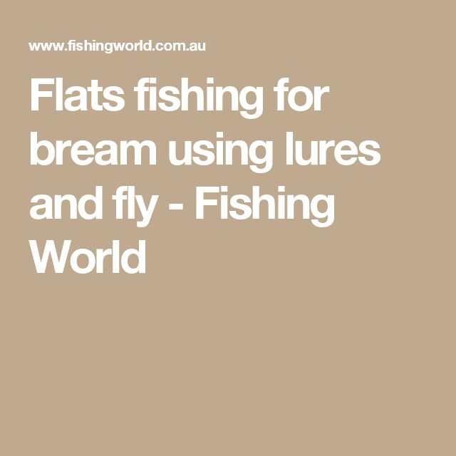 Flats fishing for bream using lures and fly - Fishing World