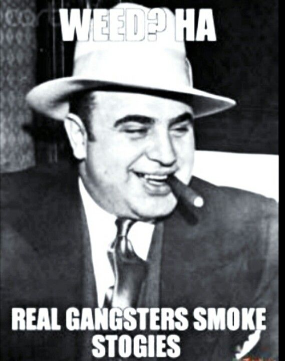 real gangster here funny but true pinterest real