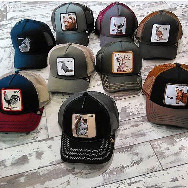 La marca de gorras (con animales) que todos llevan  90ed7ce5cfb