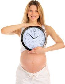Semana de tu embarazo