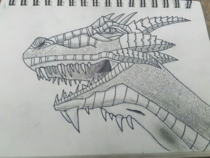 My 30 min worth of drawing