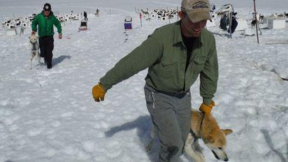 """Dallas Seavey From #NatGeo TV's """"Ultimate Survival Alaska"""""""