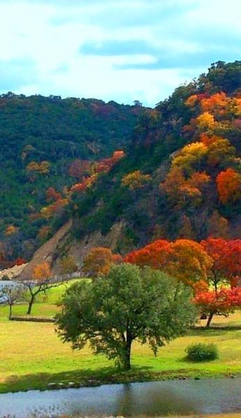 The Texas Hill Country is not as famous as New England for fall color, but we do have it. Like an autumn colors in Lost Maples State Natural Area near San Antonio. http://texaslesstraveled.com/autumnroadtrips.htm