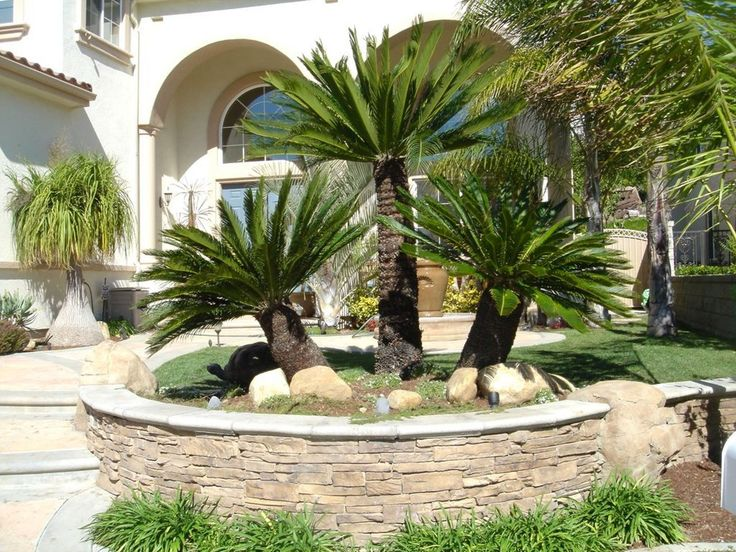 17 Best ideas about Tropical Backyard Landscaping on ...