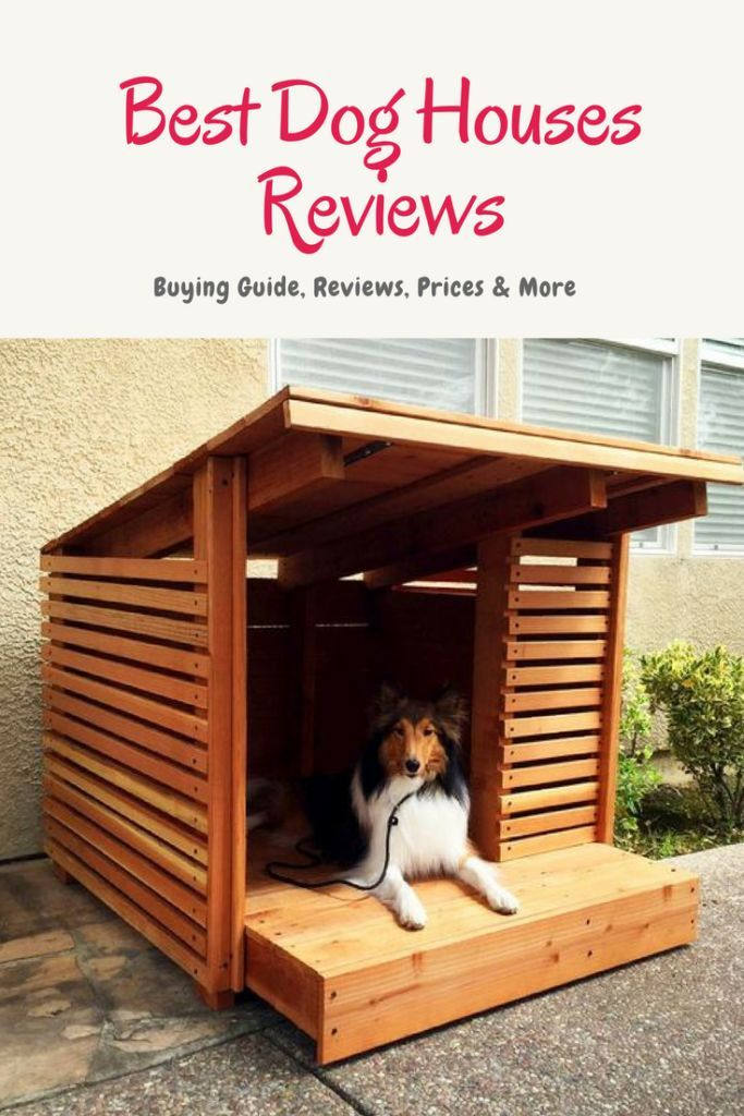 Best Dog Houses Cool Dog Houses Big Dog House Dog Houses