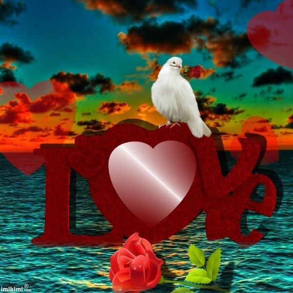 love sea httpimikimicommainview_kimi1fa6x