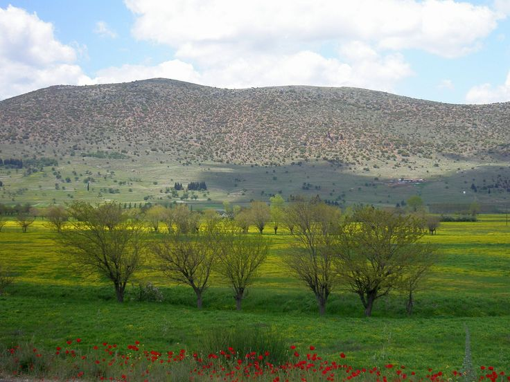https://flic.kr/p/6k4fY7   Green, yellow and red   Spring landscape close to Tripoli in Peloponnese, Greece