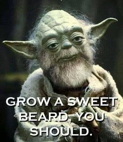 Even got Yoda rockin a beard!