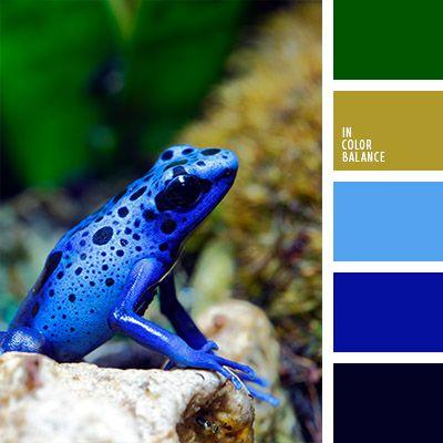 azul celeste, azul claro fuerte, azul neón, azul oscuro fuerte, azul oscuro y celeste, celeste neón, color azul turquí, color pantano, colores contrastantes, combinación de colores, elección del color, matices de color pantano, tonos fríos, tonos verdes, verde oscuro.