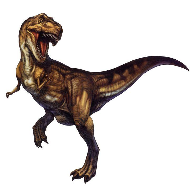 Tyrannosaurus.jpg 1.031×1.020 pixels