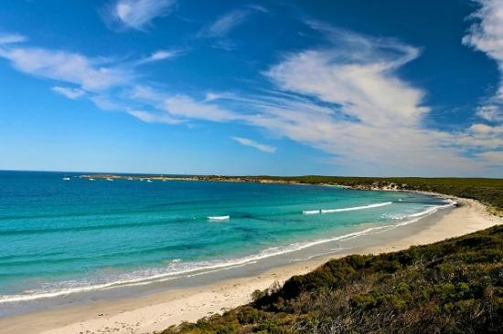 Kangaroo Island  - Vivonne Bay South #Australia   http://www.tripadvisor.com.au/ShowForum-g255092-i697-South_Australia.html