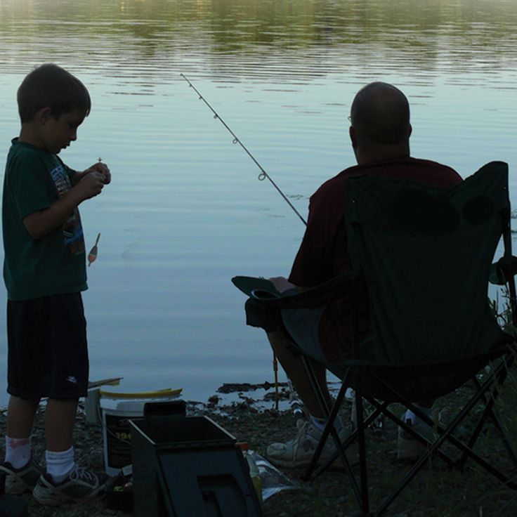 17 best images about things to do in stark parks on for Fishing license age