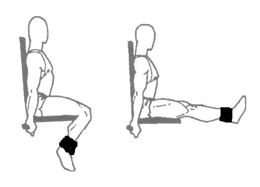 Leg Extension From Www The Fitness Motivator Com Fitness Routine 2