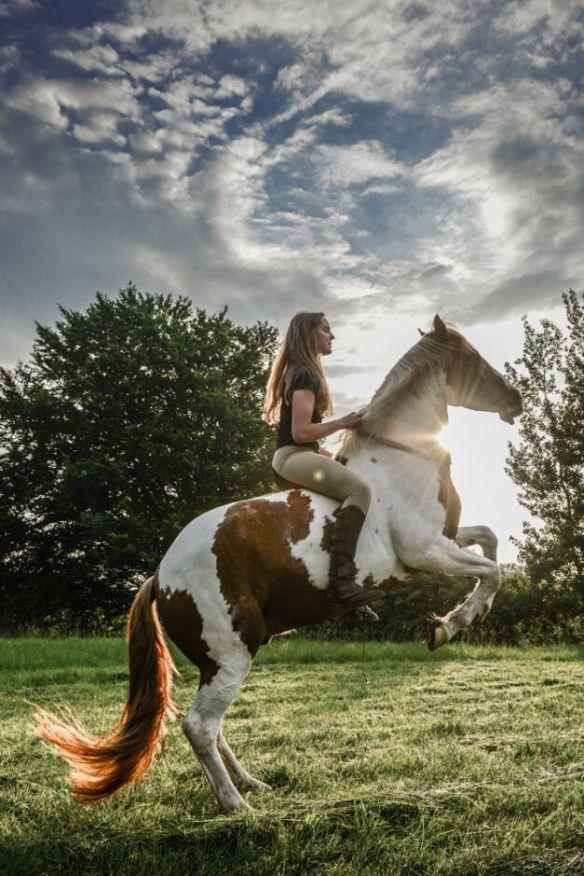 15 extraordinary horse facts