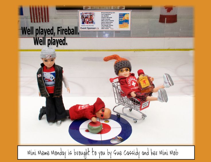 A few of the Mini People star in a Fireball meme. Follow my Mini Meme Monday page on facebook! yes, that's me in the cart. FML.