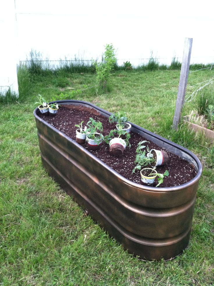 Raised Garden Made From Water Trough. Painted To Look Like Aged Copper Tub.  Plants