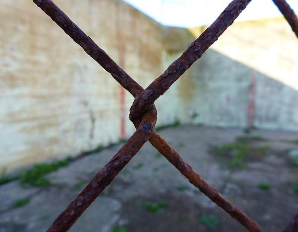 A close up shot of a rusty fence link inside Alcatraz prison. Want this picture printed on canvas or cards etc? Click on the image :)