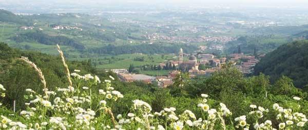 Panorama in #Valpolicella |  http://www.agriturismo.st/it/italia/Strada-del-Valpolicella/