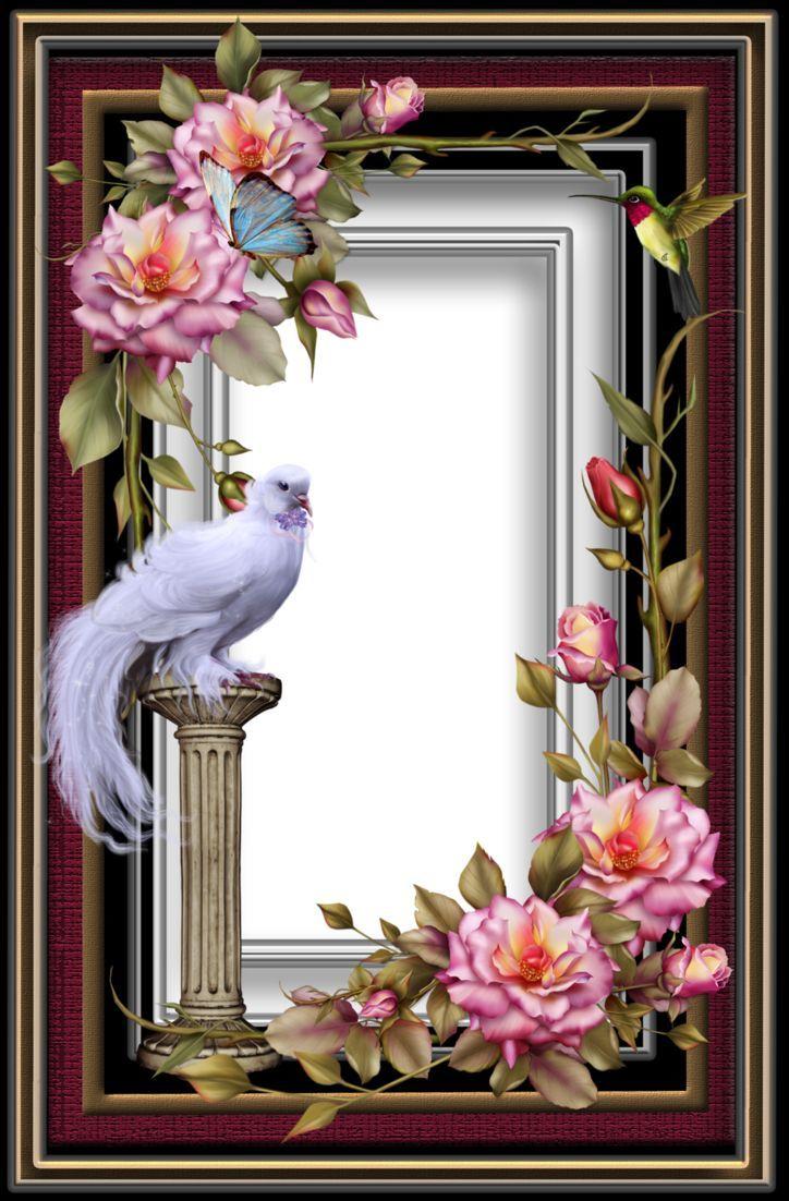 frame22 by collectandcreat on DeviantArt Floral border
