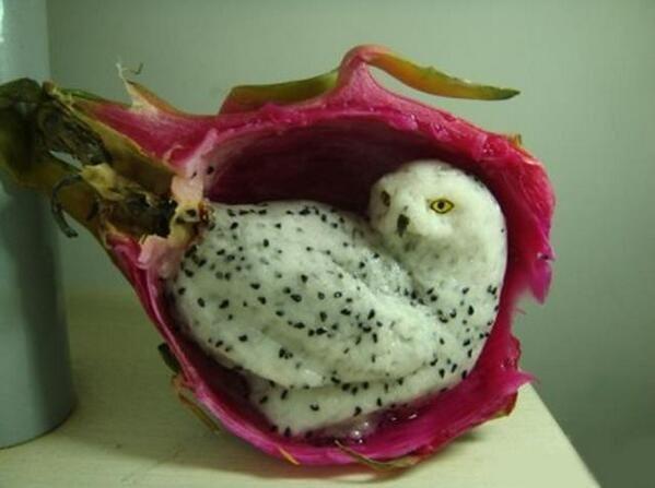 ドラゴンフルーツに彫られたシロフクロウ。ほんものみたい。 pic.twitter.com/5AiVRScEtz