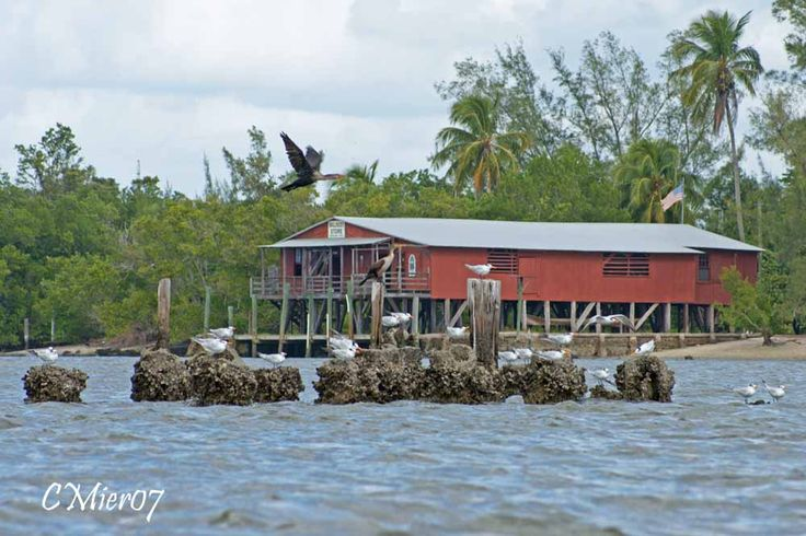 Smallwood Store is an exceptional slice of Florida history at an end-of-the-road site overlooking Chokoloskee Bay near Everglades City.