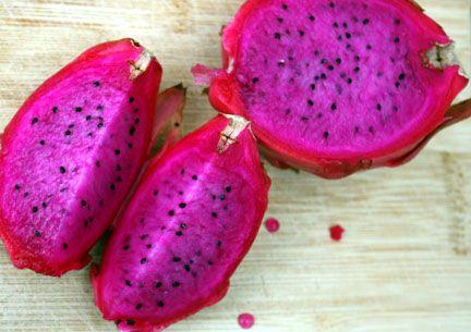 How To Get Your Dragon Fruit Cactus To Fruit | TastyLandscapeTastyLandscape