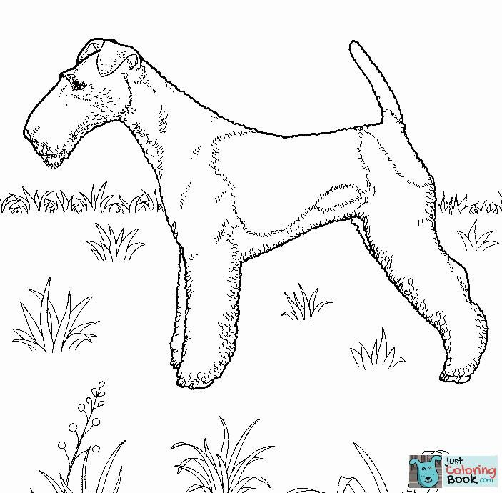 Fox Terrier Coloring Page Free Printable Coloring Pages Pertaining