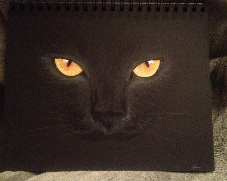 prismacolor on black paper, by Heidi Redfield  heidisvisuallife.blogspot.com