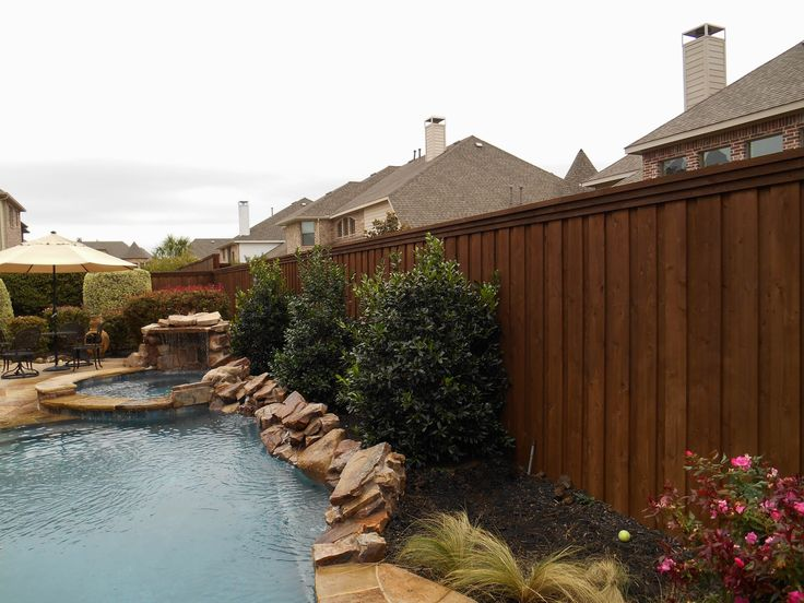 10 Best Images About Best Trees Amp Shrubs For Pools On