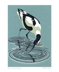 Robert Gillmor: lino prints Avocet Feeding