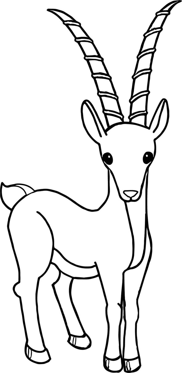Cartoon Antelope Coloring Page in 2020