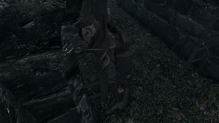 When the Riften thief refuses to give up his secrets to Mjoll. #games #Skyrim #elderscrolls #BE3 #gaming #videogames #Concours #NGC