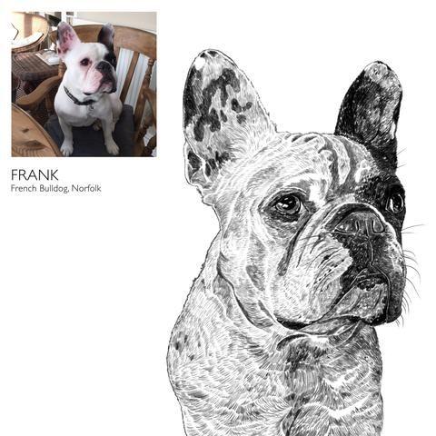 'Bespoke Dog Portrait'