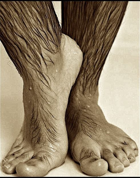Hairy feet gay