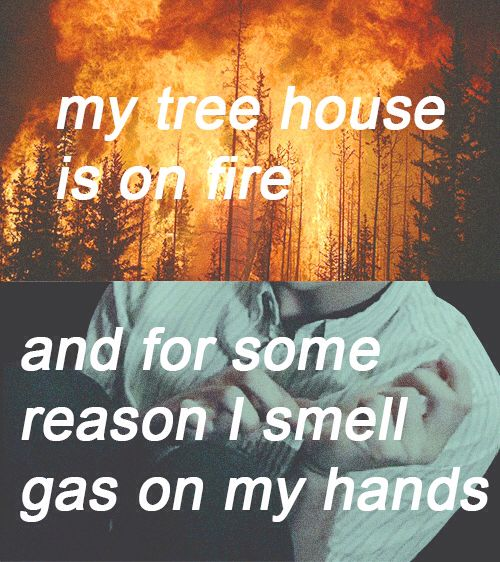 forest, twenty one pilots