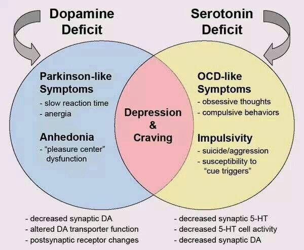 Dopamine-Seratonin