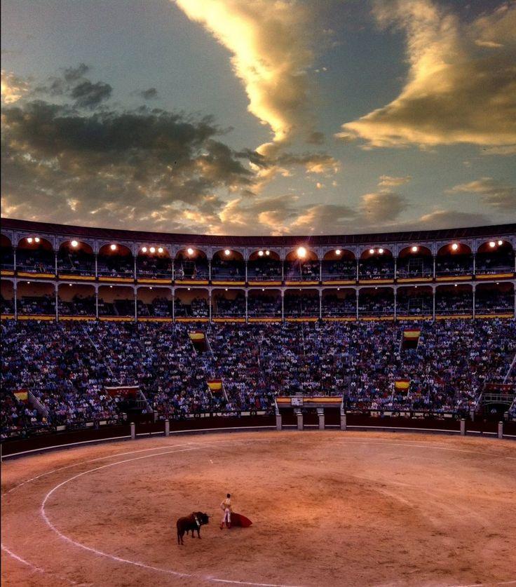 Corrida en Plaza de Toros Madrid