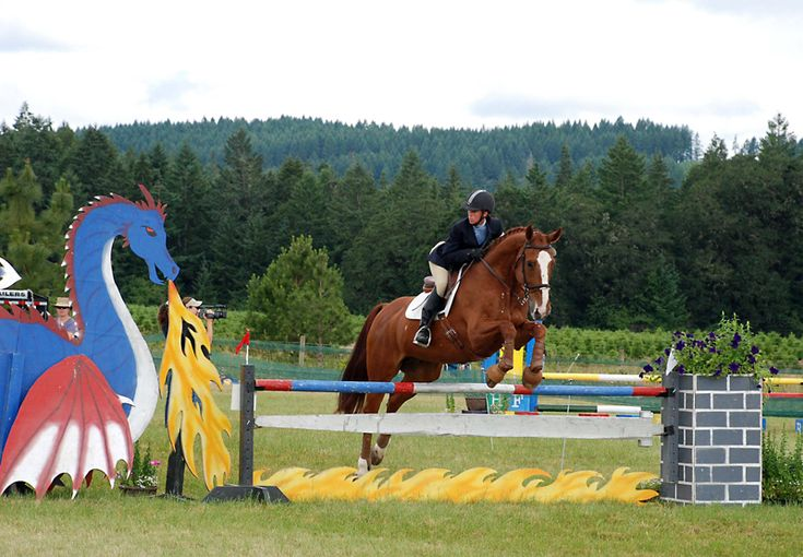 Cross Country Horse Jumps Google Search Cross Country