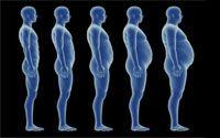 Dieta dos Pontos | Cardápio, Tabela Completa e Como Calcular