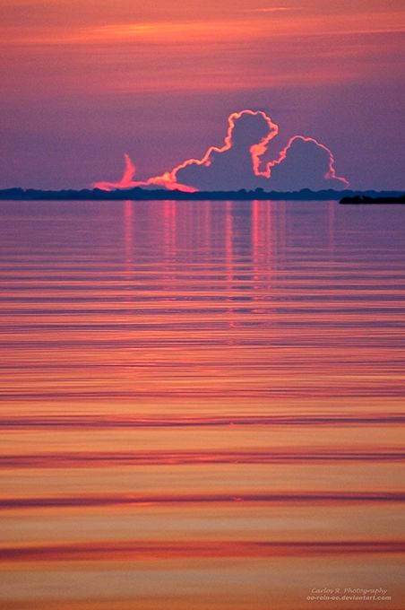 ✯ Sunset at the Negro River - Amazon Rain Forest